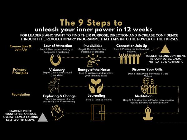 9 steps to unleash the inner power program
