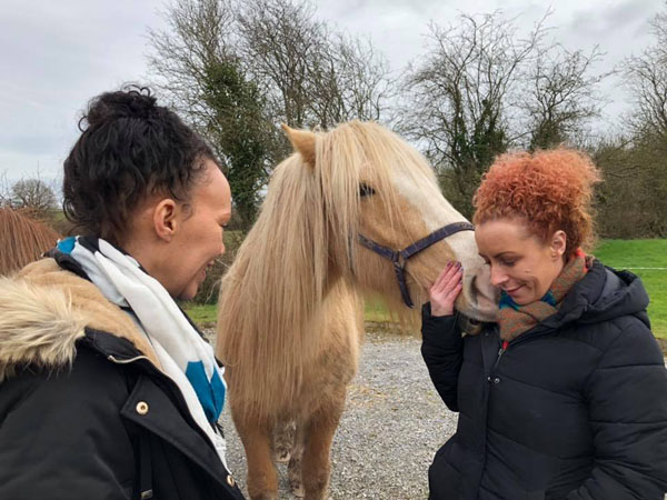 equine one to one therapy