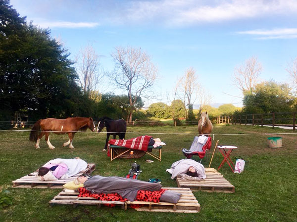 equine therapy retreats